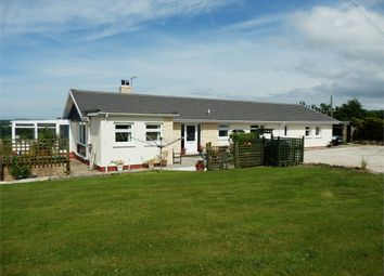 Thumbnail 5 bed detached bungalow for sale in Crib Y Gwynt, Tanygroes, Cardigan, Ceredigion