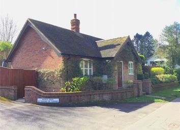 Thumbnail 2 bed detached bungalow to rent in The Street, Sutton Waldron, Blandford Forum