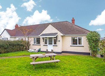 Thumbnail 4 bed bungalow for sale in Tuckers Park, Bradworthy, Holsworthy