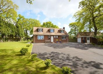 Thumbnail 4 bedroom detached bungalow for sale in Heath Road North, Locks Heath, Southampton
