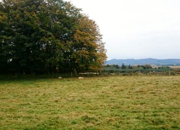Thumbnail Land for sale in Cairnhill Farm, Culsalmond, Insch