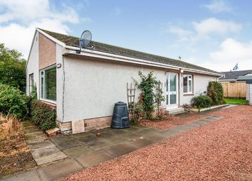 Thumbnail 3 bed bungalow to rent in St. Ninians Road, Alyth, Blairgowrie