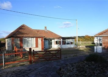 Thumbnail 3 bed detached bungalow for sale in Cedar Stone, Limpers Hill, Mere