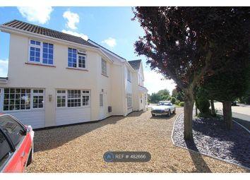 Thumbnail Studio to rent in Plymtree, Southend On Sea