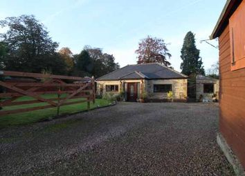 Thumbnail 4 bed bungalow for sale in Powburn, Alnwick, Northumberland