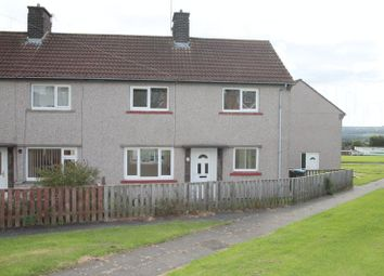 Thumbnail 3 bed semi-detached house to rent in Holly Park, Brandon, Durham