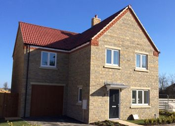 Thumbnail 4 bed detached house for sale in Snowdrop Close, Raunds, Wellingborough