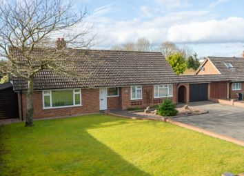 Thumbnail 4 bedroom detached bungalow to rent in Church Lane, Challock, Ashford