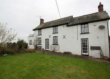 Thumbnail 4 bed cottage for sale in Maypole, Monmouth