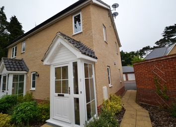 Thumbnail 2 bed flat to rent in Petersfield Drive, Norwich, Norfolk