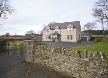 Thumbnail 5 bed detached house to rent in Templeton Farm, Birkhill, Angus