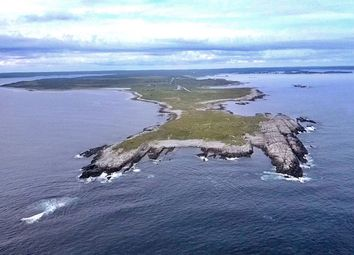 Thumbnail Land for sale in Western Head, Nova Scotia, Canada