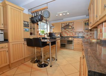 Thumbnail 4 bed semi-detached house for sale in Restons Crescent, London