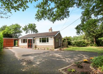 Thumbnail 2 bed detached bungalow for sale in Crockford Road, West Grimstead, Salisbury