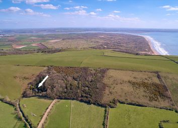 Thumbnail 3 bed cottage for sale in Cross, Croyde, Braunton