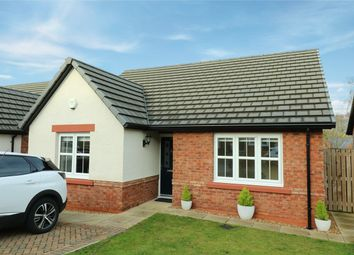Thumbnail 2 bedroom bungalow to rent in Goldington Drive, Bongate Cross, Appleby-In-Westmorland
