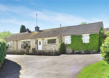 Thumbnail 7 bed detached bungalow for sale in Winterbourne Abbas, Dorchester, Dorset