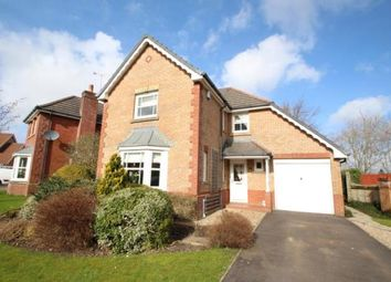 Thumbnail 4 bed detached house for sale in Deaconsbank Gardens, Thistlebank