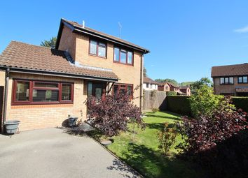 Thumbnail 3 bed detached house for sale in The Newlands, Mardy, Abergavenny