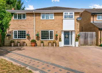 Thumbnail 6 bed semi-detached house for sale in Rose Close, Hartwell, Northampton