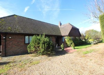 Thumbnail 3 bed detached bungalow to rent in Saucelands Lane, Shipley, West Sussex