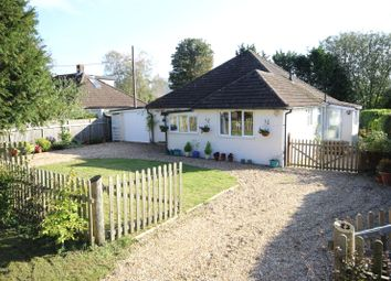 Thumbnail 3 bed bungalow for sale in Paice Lane, Medstead, Alton, Hampshire