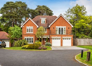 Thumbnail 5 bedroom detached house for sale in Hook Heath/St Johns Boarders, Surrey