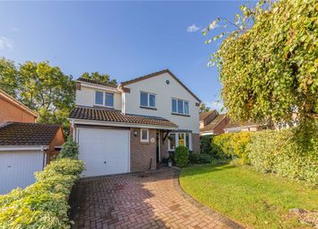 Chaffinch Close, Wokingham, Berkshire RG41. 4 bed detached house for sale