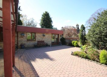 Thumbnail 3 bed bungalow to rent in Isla Road, Perth