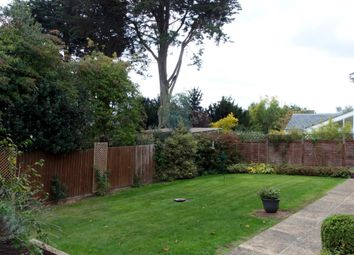 Thumbnail 4 bed detached house for sale in Aldergrove Close, Halesworth, Suffolk