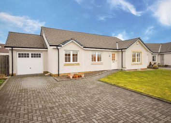 Thumbnail 3 bed bungalow for sale in Levenbridge Place, Kinross, Kinrosshire