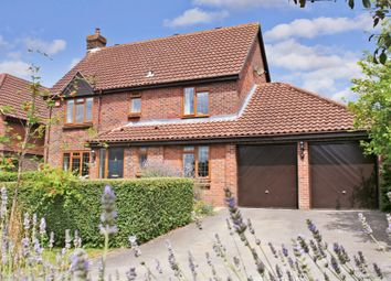 Thumbnail 4 bed detached house for sale in Tennyson Close, Bishops Waltham, Southampton