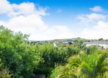 Thumbnail 2 bed detached bungalow for sale in Pines Road, Paignton