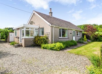 Thumbnail 3 bed detached bungalow for sale in Edzell, Bridgend, Brechin, Angus