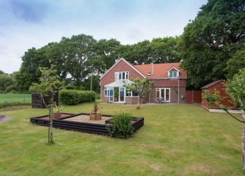 Newells Lane, West Ashling, Chichester PO18. 4 bed detached house for sale