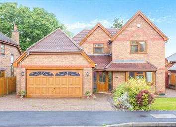 Thumbnail 4 bed detached house to rent in Quarndon Heights, Allestree, Derby