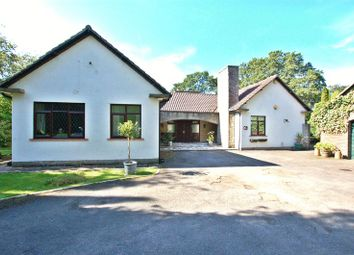 Thumbnail 4 bed detached house for sale in South Drive, Woolsington, Newcastle Upon Tyne