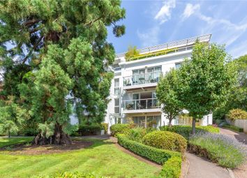 2 bed property to rent in Hightrees, 9 Queensmere Road, London SW19