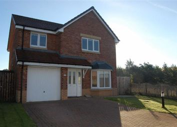 Thumbnail 4 bed detached house to rent in 36, Kestrel Avenue, Dunfermline, Fife