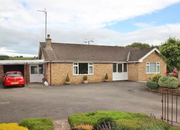 Thumbnail 4 bed detached bungalow for sale in Mitcheldean Road, Lea, Ross-On-Wye