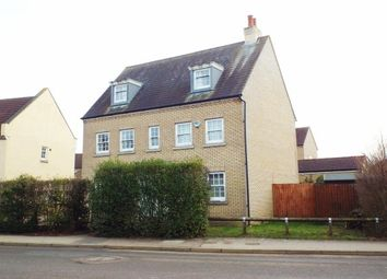 Thumbnail 5 bed property to rent in Wissey Way, Ely