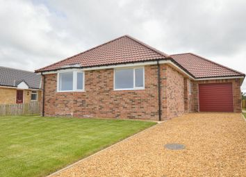 Thumbnail 3 bed bungalow for sale in Christon Bank, Alnwick