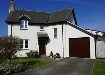 Thumbnail 3 bed detached house for sale in Little Meadow, Pyworthy, Holsworthy