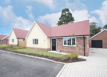 Thumbnail 3 bed bungalow to rent in Clay Hall, Wyndham Crescent, Clacton On Sea