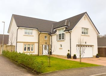 Thumbnail 5 bedroom property for sale in Gadwall Grove, Motherwell