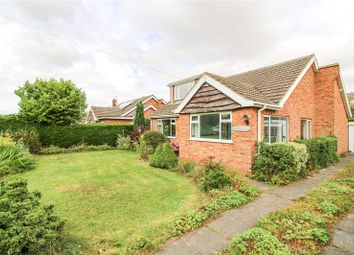 Thumbnail 4 bed bungalow for sale in Plumtree Lane, North Thoresby