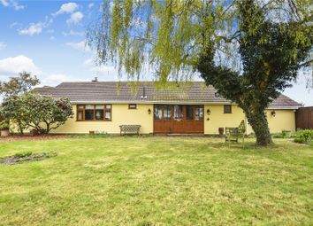 Thumbnail 3 bedroom detached bungalow for sale in Danson Road, Bexley, Kent