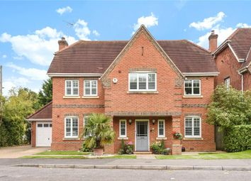 Thumbnail 5 bed detached house to rent in Hope Fountain, Camberley