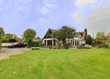 Thumbnail 3 bed detached house for sale in Lime Grove, West Hayling, Hayling Island