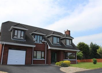 Thumbnail 4 bed detached house for sale in Highfields Drive, Newry